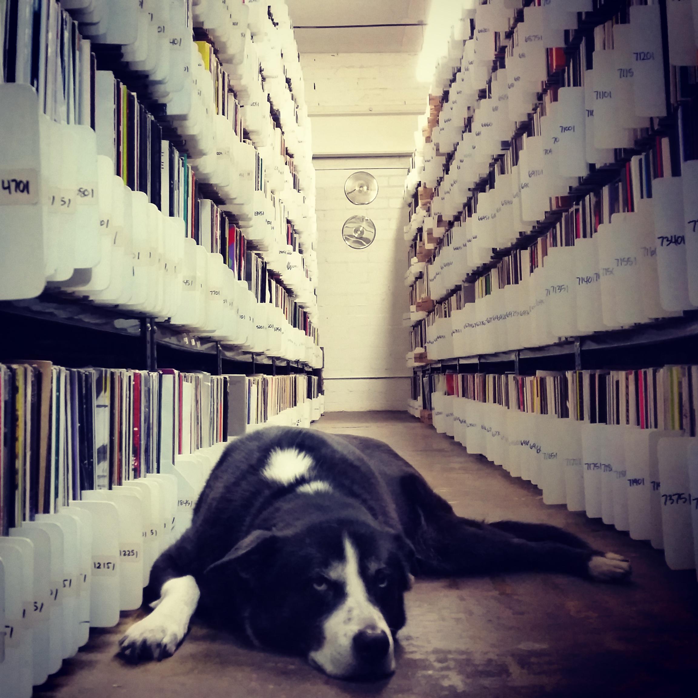 Discogs Seller Rambone