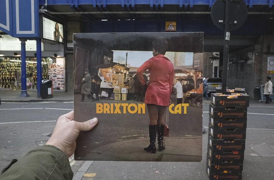 brixton-cat-cover