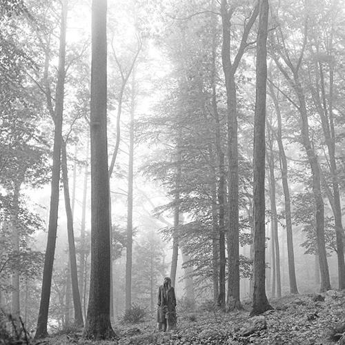 taylor swift folklore album cover